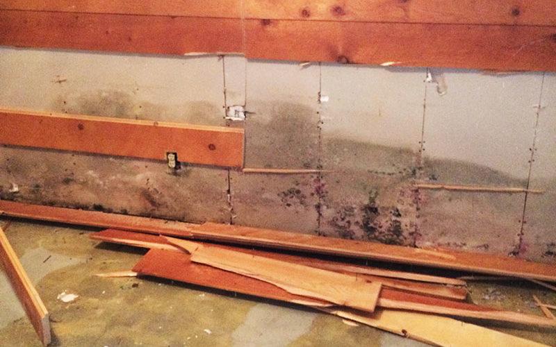 Water Mold Repair Water Damage Restoration
